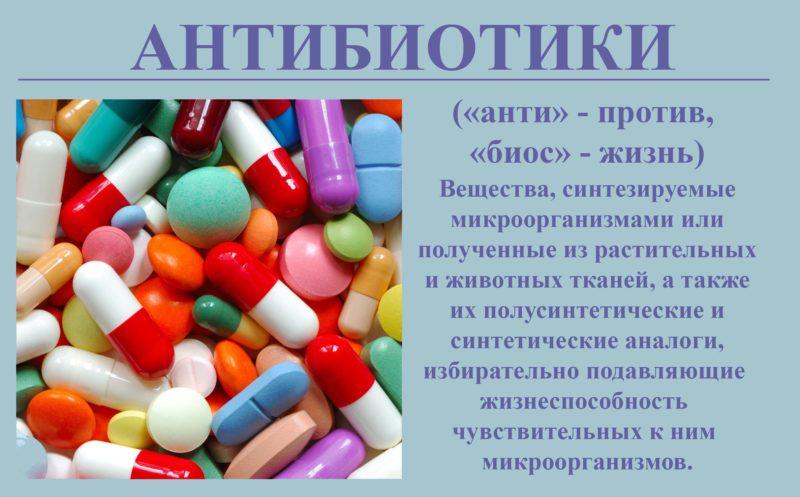 Что такое антибиотики