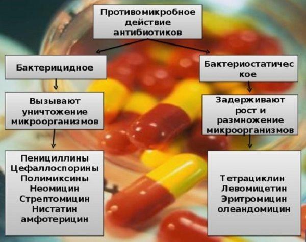 Действие антибиотиков