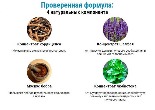 Состав натуральных компонентов Вирекс