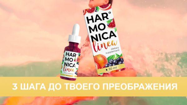 Harmonica Linea - 3 шага к новой фигуре