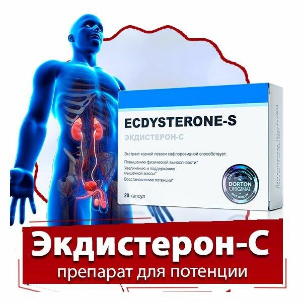 Экдистерон - укрепление организма